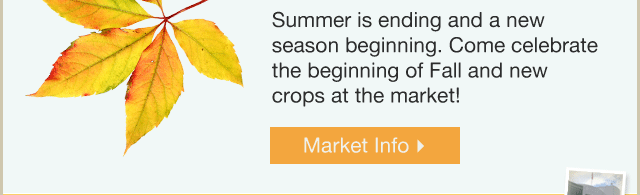 Market Info >
