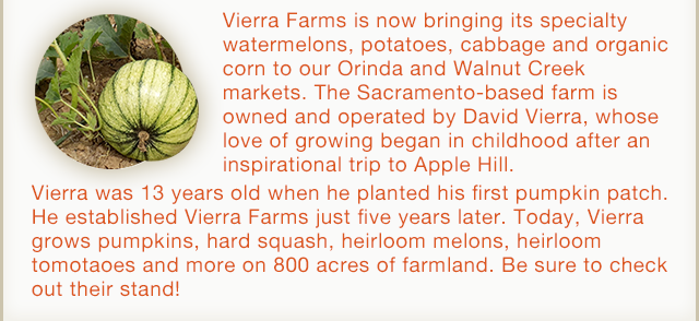 Vierra Farms grows pumpkins, squash, melons and more!