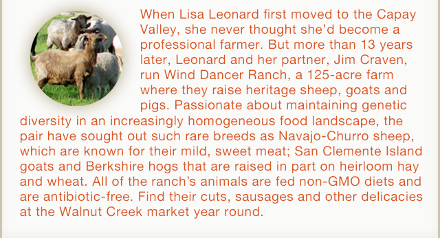 Wind Dancer Ranch Description